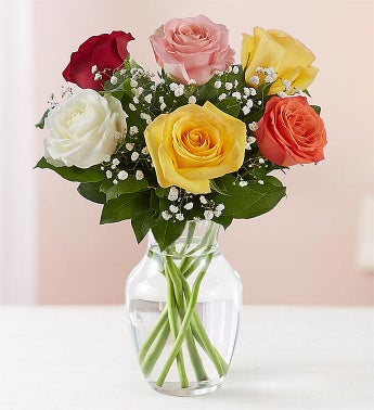 Loves Embrace Assorted Roses