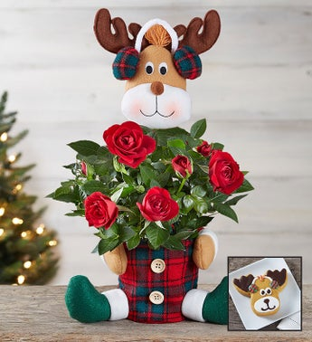 Red Rose Reindeer