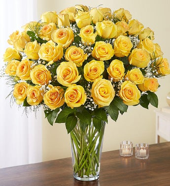 Ultimate Elegance Long Stem Yellow Roses
